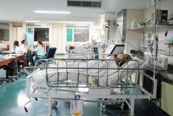 Mudança nos procedimentos tem impacto na doação e transplante de órgãos, que só pode ser iniciado após consentimento da família e da confirmação da morte cerebral do paciente. Foto: Marcelo Casal/Agência Brasil