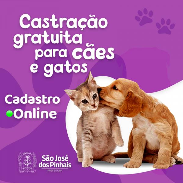 Foto: divulgação / Prefeitura SJP